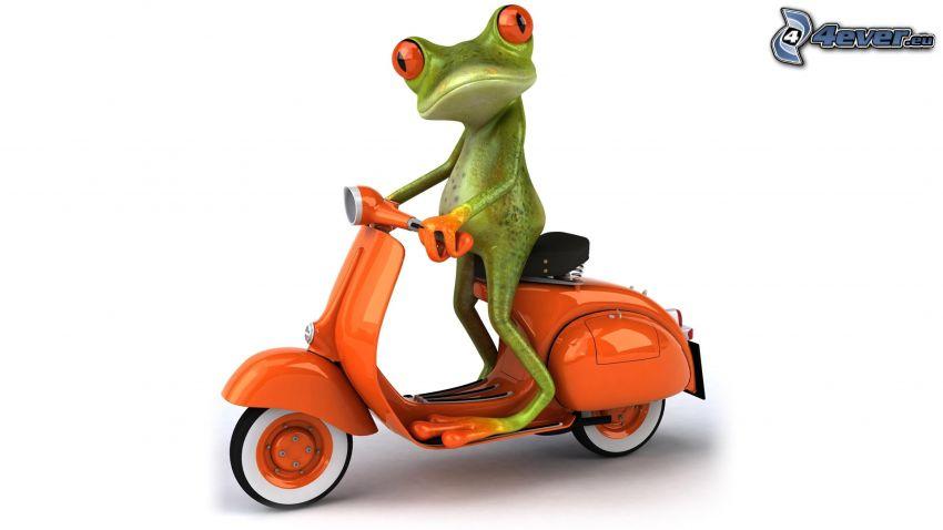 rana, scooter