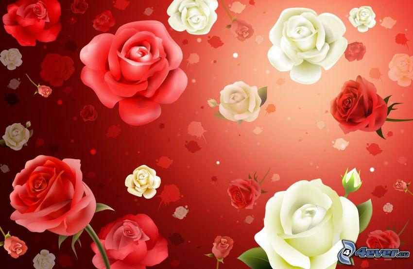 rose, sfondo rosso