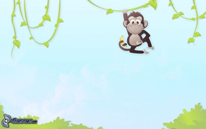 scimmia, liane
