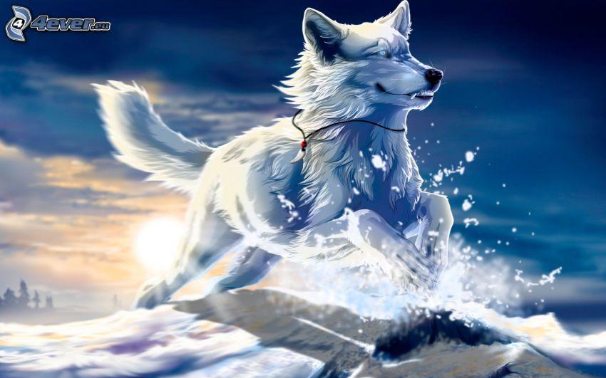 Siberian husky, cane disegnato, neve