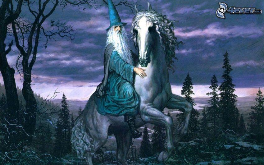 stregone, druido, cavallo bianco