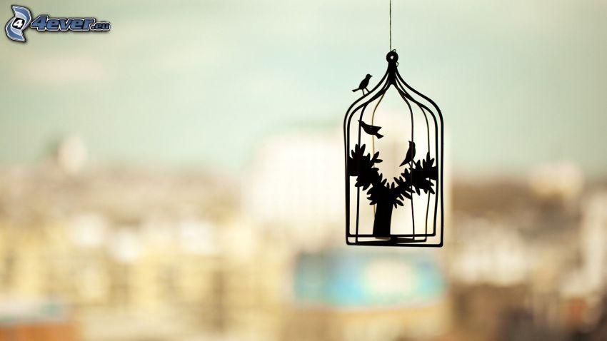 uccelli, gabbia