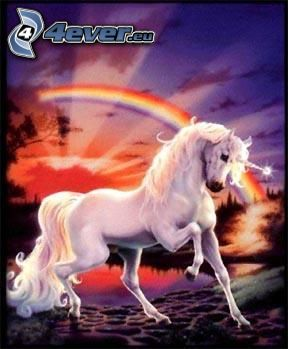 unicorno, arcobaleno