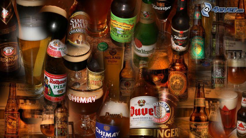 birra, bottiglie