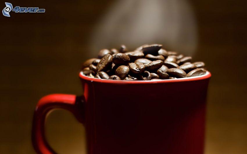 chicchi di caffè, tazza