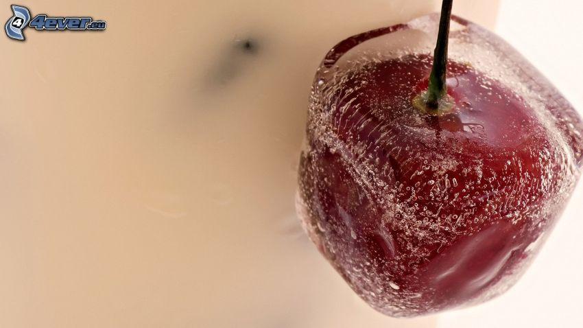 ciliegia, cubo di ghiaccio