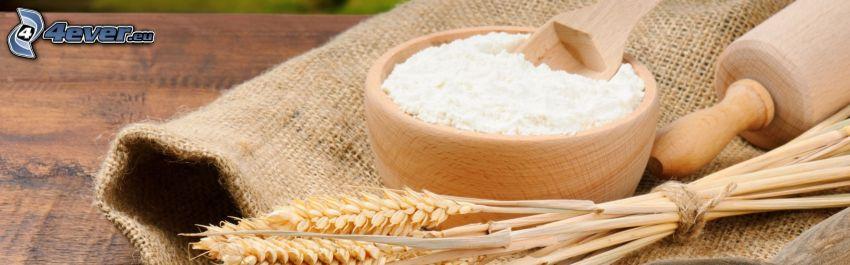 farina, grano