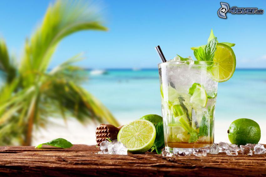 mojito, lime, cubi di ghiaccio, mare, palma