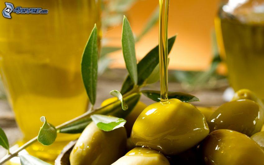 olio d'oliva, olive, ramoscello