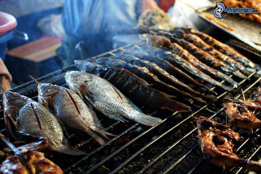 pesci, carne alla griglia