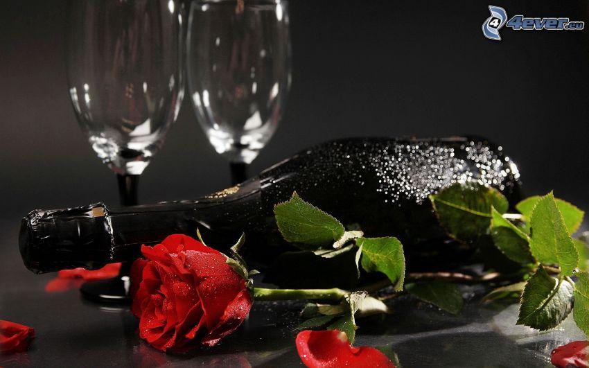 rosa rossa, bottiglia, bicchieri