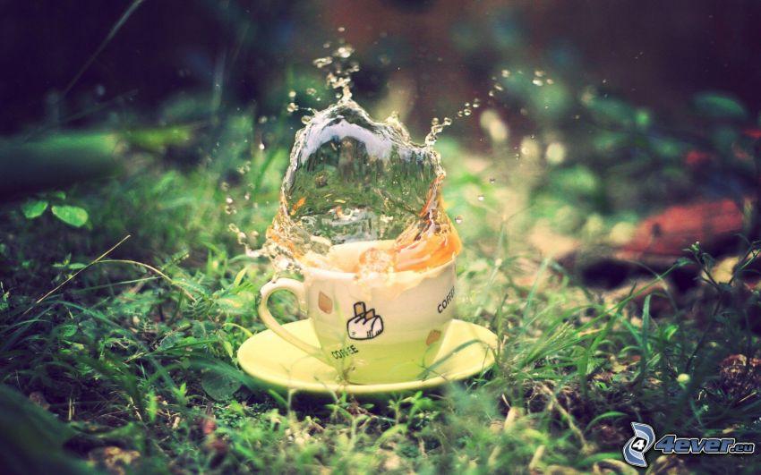 splash, tazza di tè, l'erba