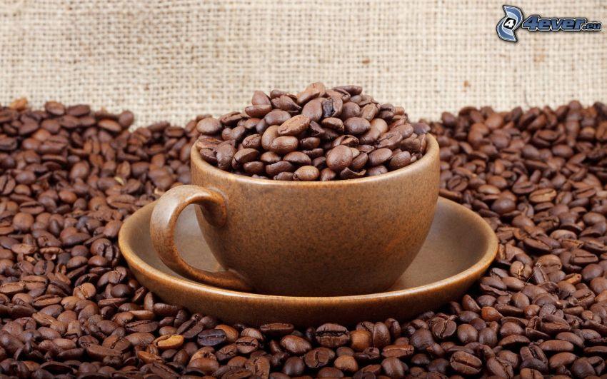tazza, chicchi di caffè, caffè