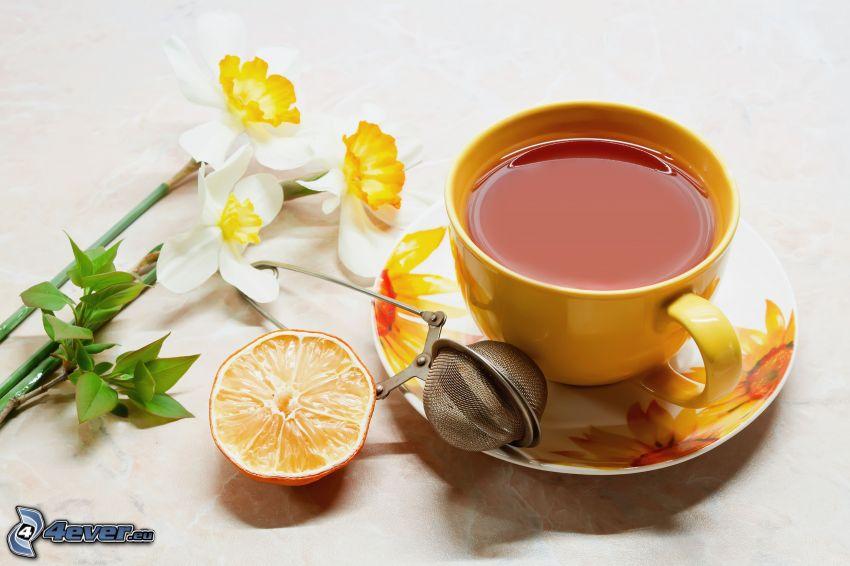 tazza di tè, narcisi
