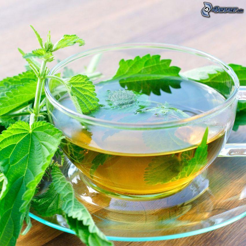 tazza di tè, tisana, ortica