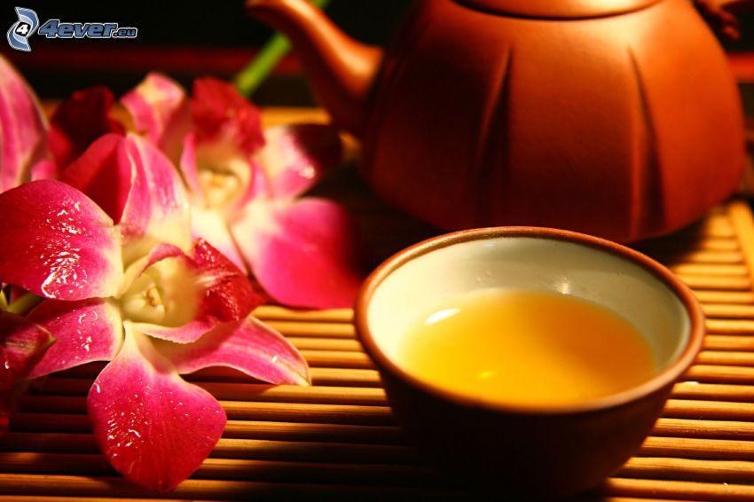 tè, teiera, orchidea