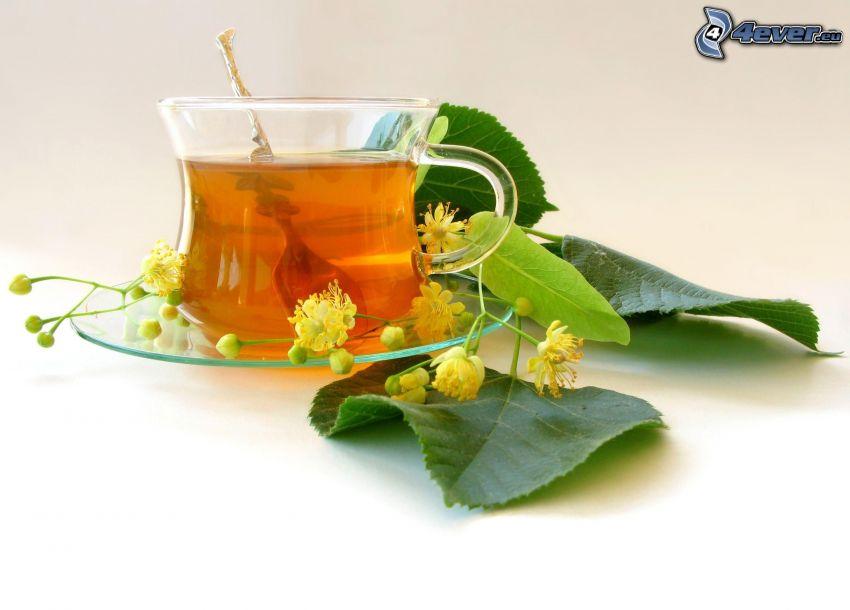 tè di tiglio