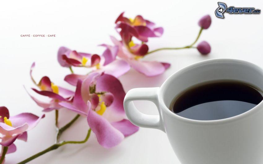 una tazza di caffè, orchidea