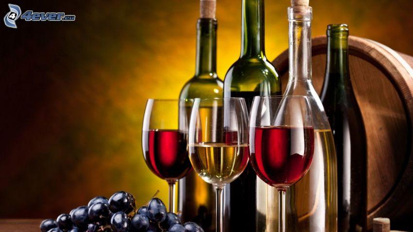 vino, uva, botte