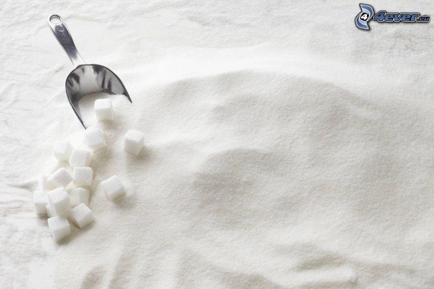 zucchero, ramaiolo, zucchero in quadretti