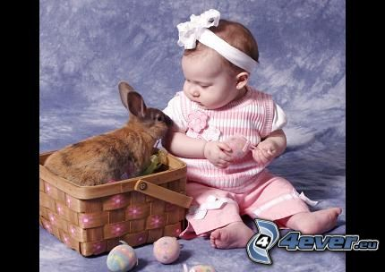 bambino, coniglio, cesto
