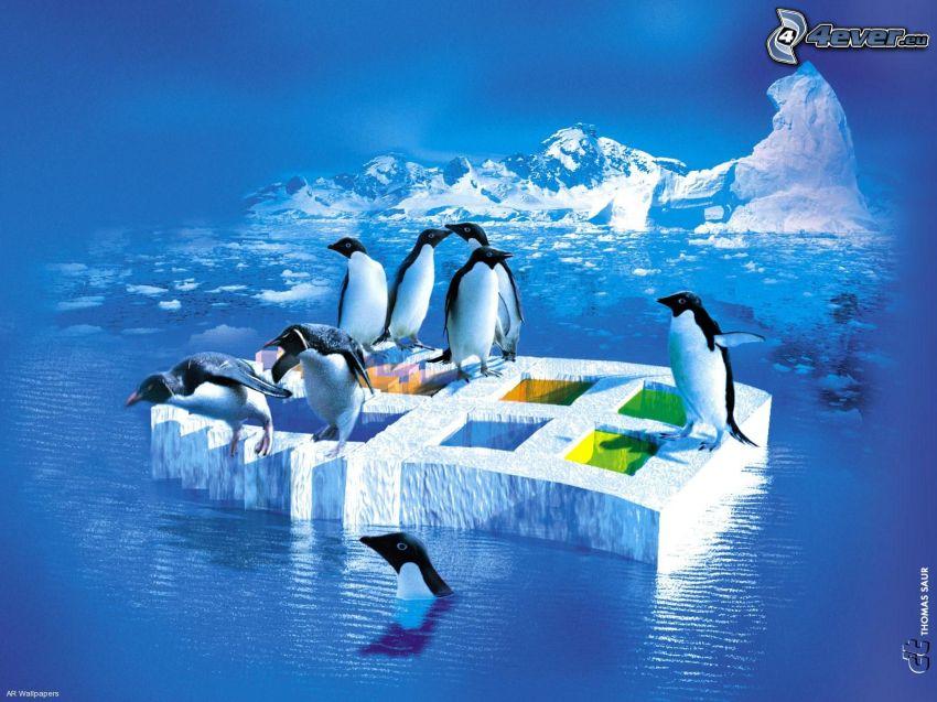 Windows, Pinguini saltano in acqua, ghiaccio