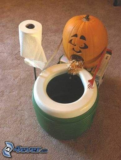 WC, zucca, carta igienica