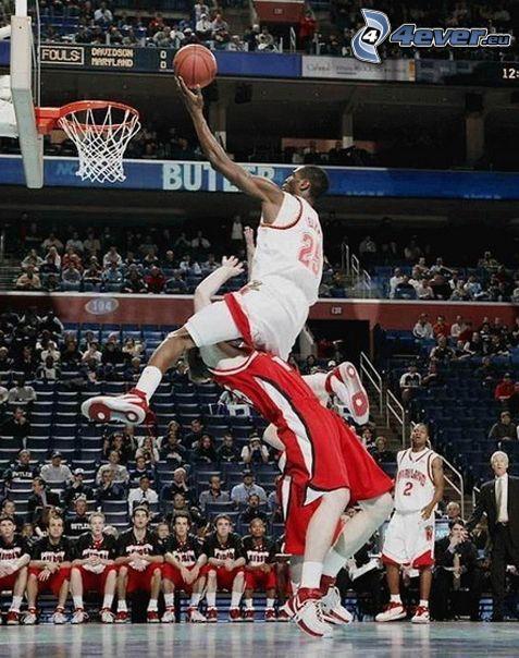 basket, istantanea, cesto, testa