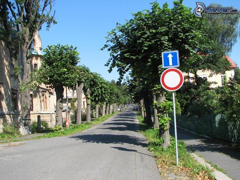 segnaletica, strada, viale albero