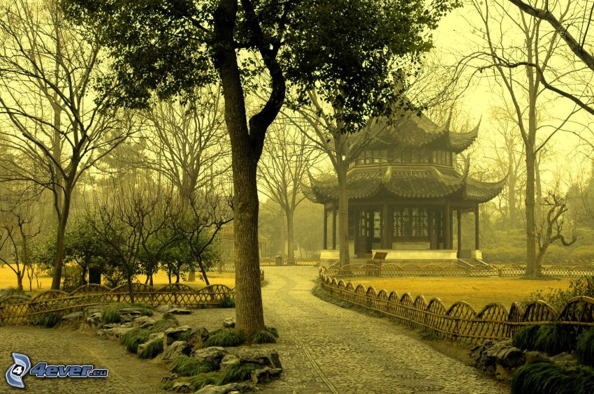 Casa giapponese, alberi, parco