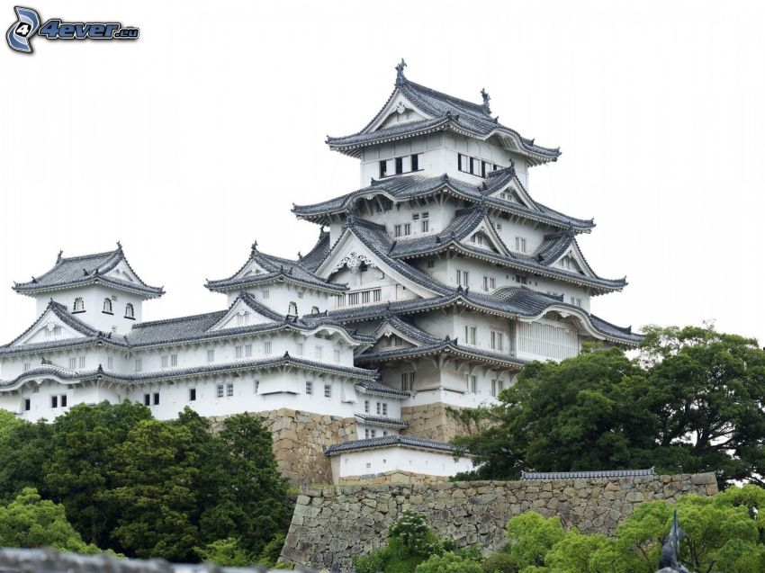 Casa giapponese, palazzo