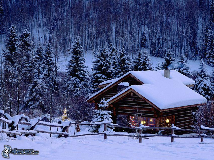 chalet coperto di neve, foresta, inverno