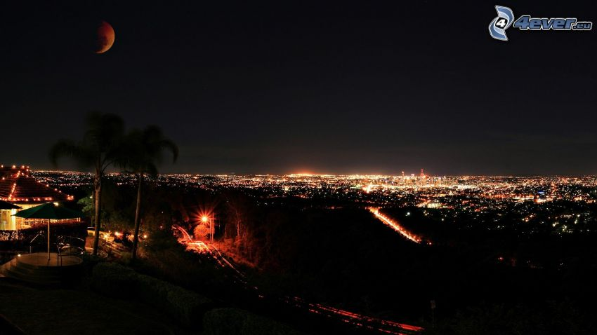 città notturno, palme