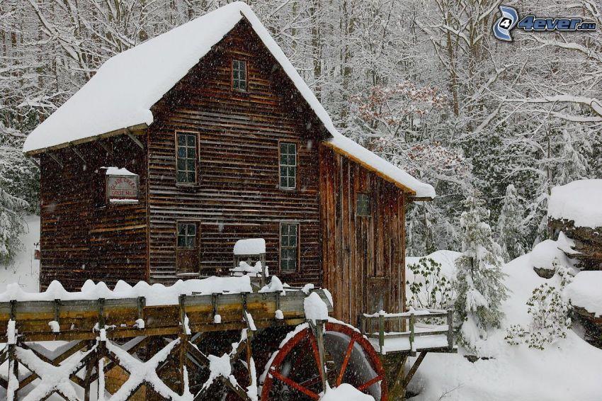 mulino ad acqua, neve, bosco innevato