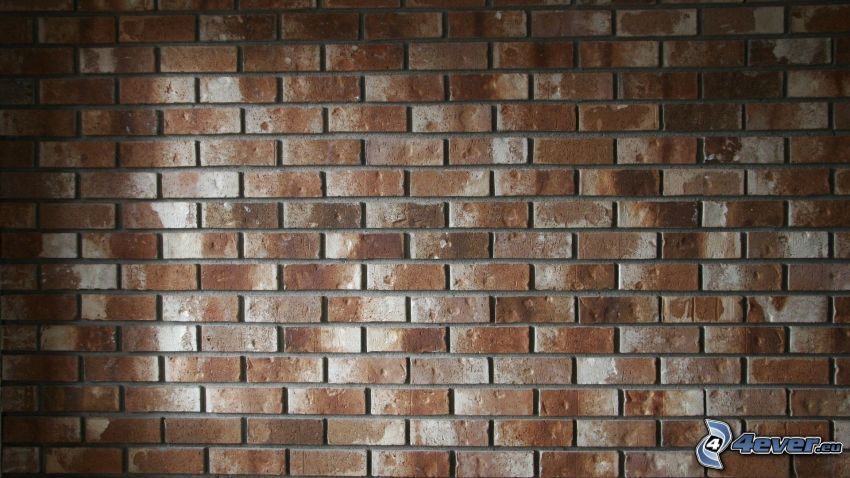 muro di mattoni, mattone