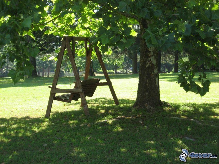 altalena, sicomoro, alberi, prato