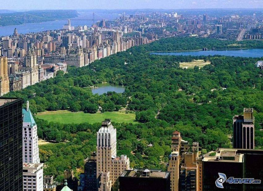 Central Park, New York, grattacieli, alberi, laghi