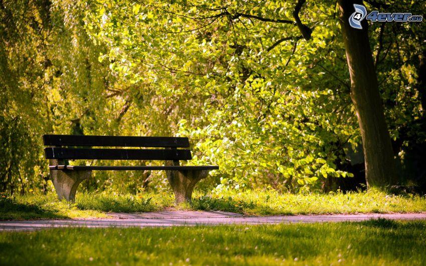 panchina nel parco
