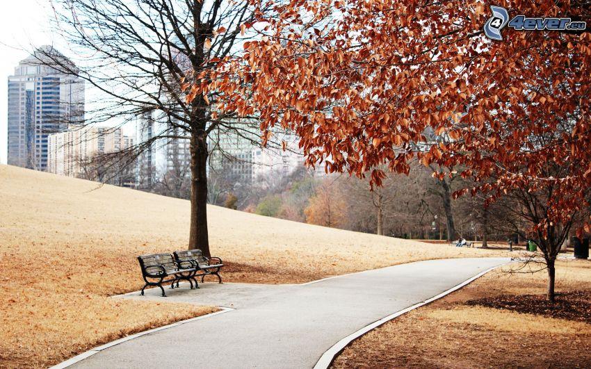 parco nell'autunno, marciapiede, panchine, foglie di autunno