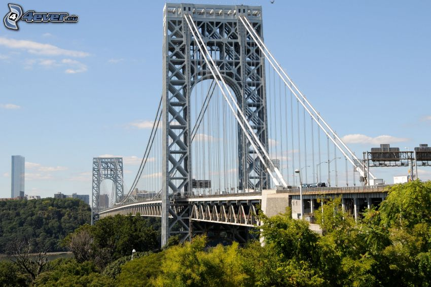 George Washington Bridge, Alberi verdi