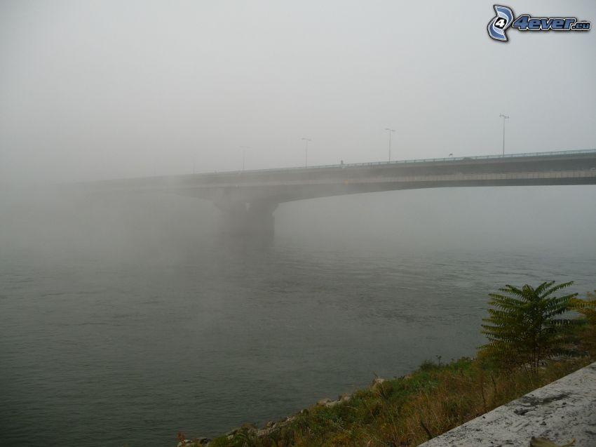 Lafranconi, nebbia, Danubio, Bratislava