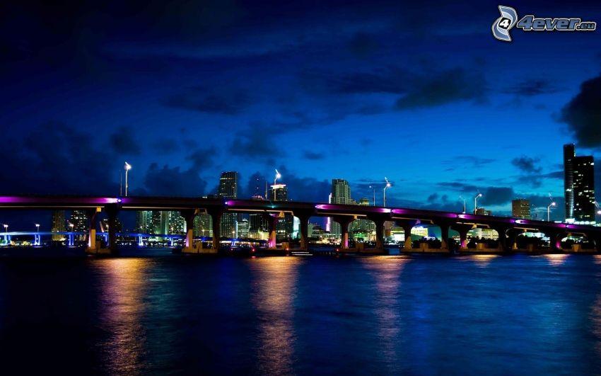 Miami, Miami Bridge, città notturno