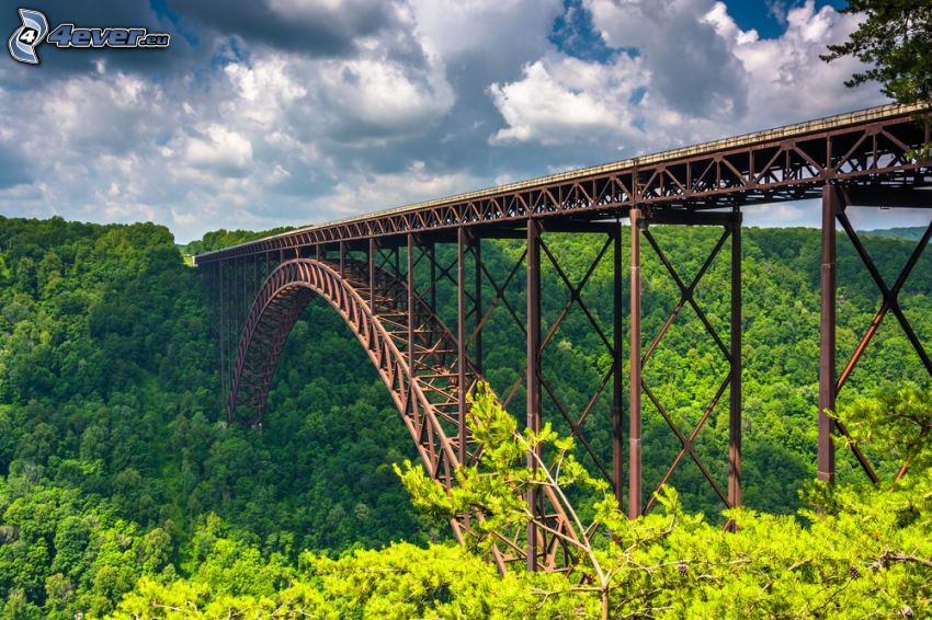 New River Gorge Bridge, foresta, HDR