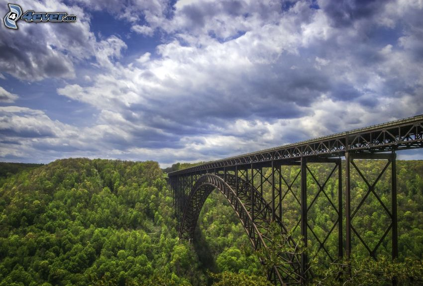 New River Gorge Bridge, foresta, nuvole