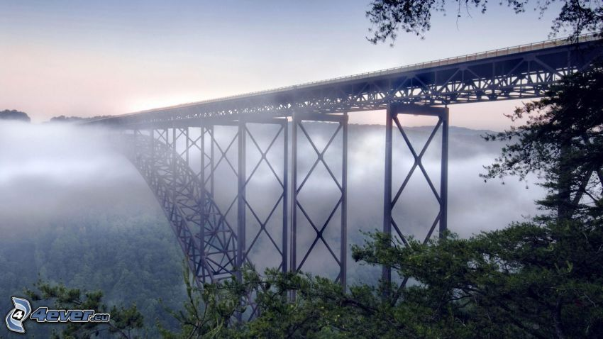 New River Gorge Bridge, nebbia sopra una foresta