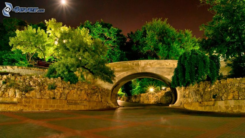 ponte, marciapiede, alberi, notte