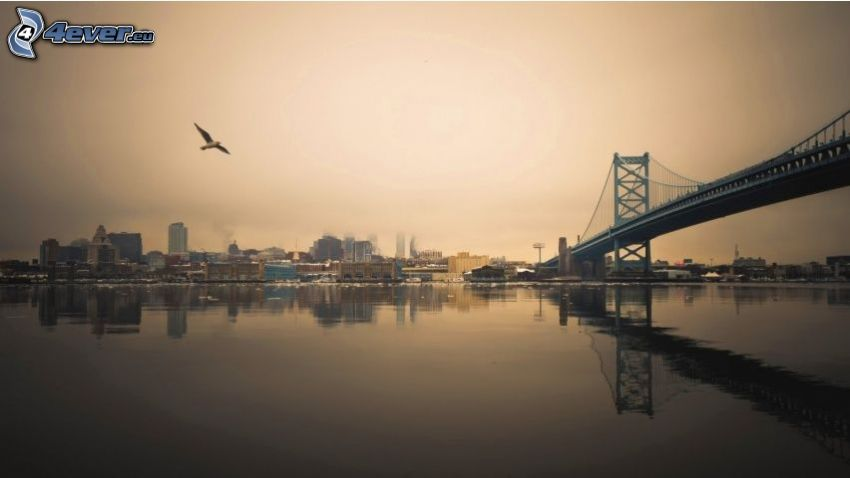 ponte, USA, sera