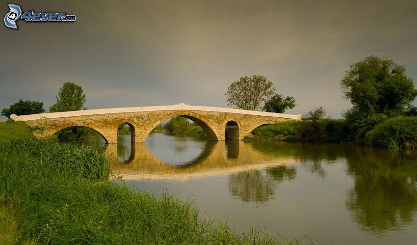 ponte di pietra, il fiume, l'erba, alberi