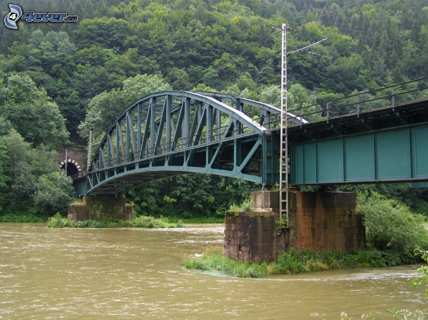 ponte ferroviario, tunnel, Váh, Strečno
