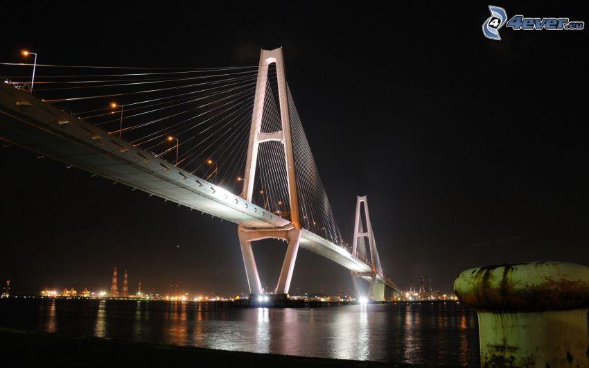 ponte illuminato, il fiume, notte